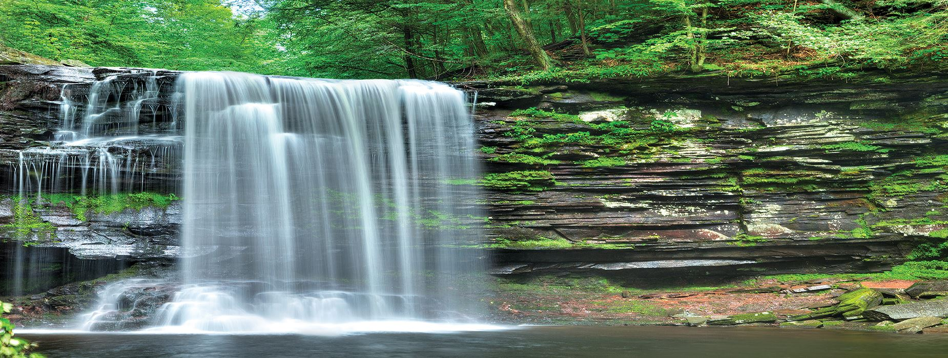 Ricketts Glen State Park Summer