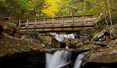 Ricketts Glen State Park Bridge